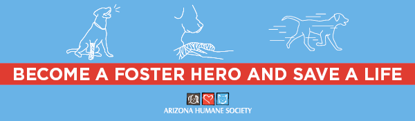 Email Footer Ads - Become A Foster Hero.png