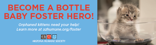 Email Footer Ads - Bottle Baby Foster.png