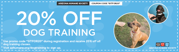 Email Footer Ads - dog Training 20 percent discount.png