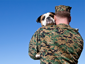 Memorial Day Military Adoption Discount