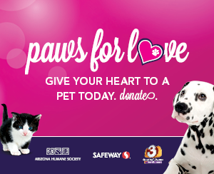 Paws-For-Love_300x244.png