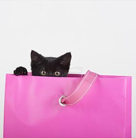 black-friday-cat-bag-etails.png