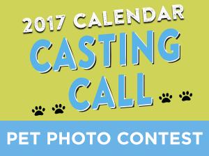 calendar_contest.png