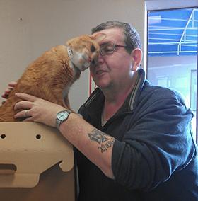 pooh-blind-cat-etails.png